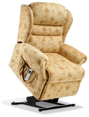 Ashford Leather Standard Electric Lift Recliner - Single Motor