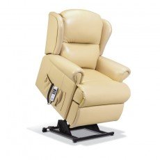 Malvern Leather Small Electric Lift Recliner - Single Motor