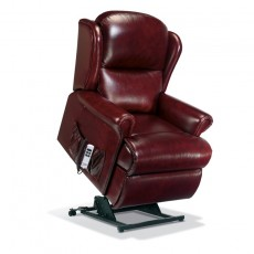 Malvern Leather Standard Electric Lift Recliner - Dual Motor